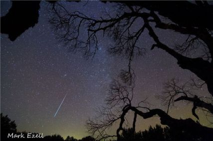 GEMINID-METEOR-SHOWER_texas